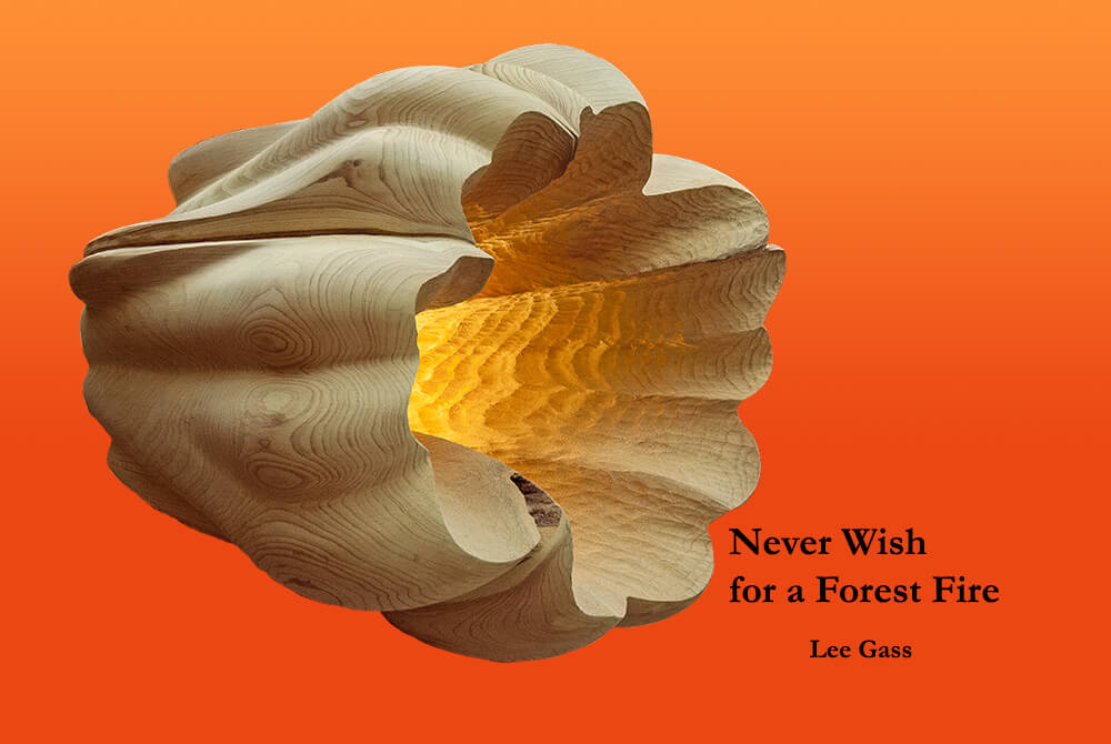 Never Wish for a Forest Fire