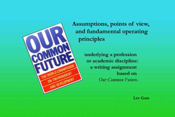 Assumptions, Points of View, and Fundamental Operating Principles