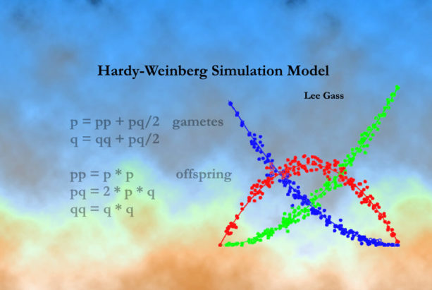 Hardy-Weinberg Simulation Model