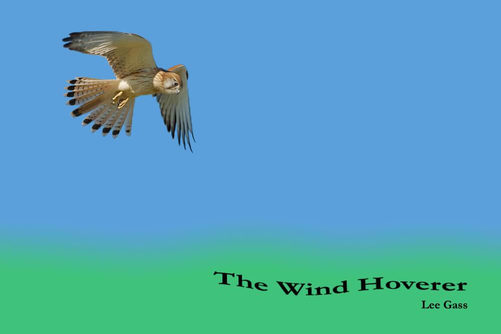 The Wind Hoverer