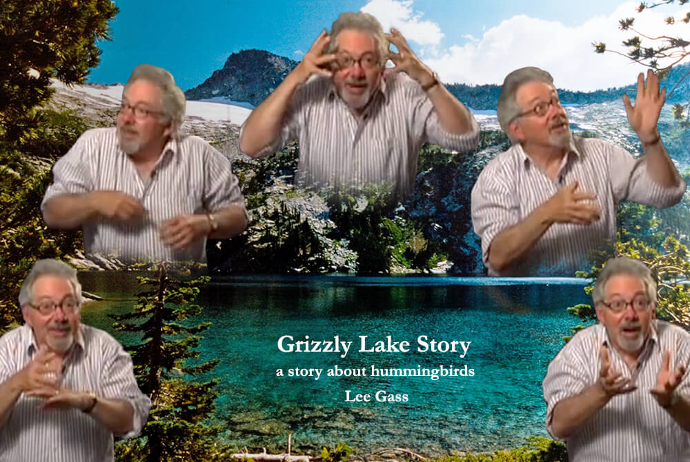 Grizzly Lake story